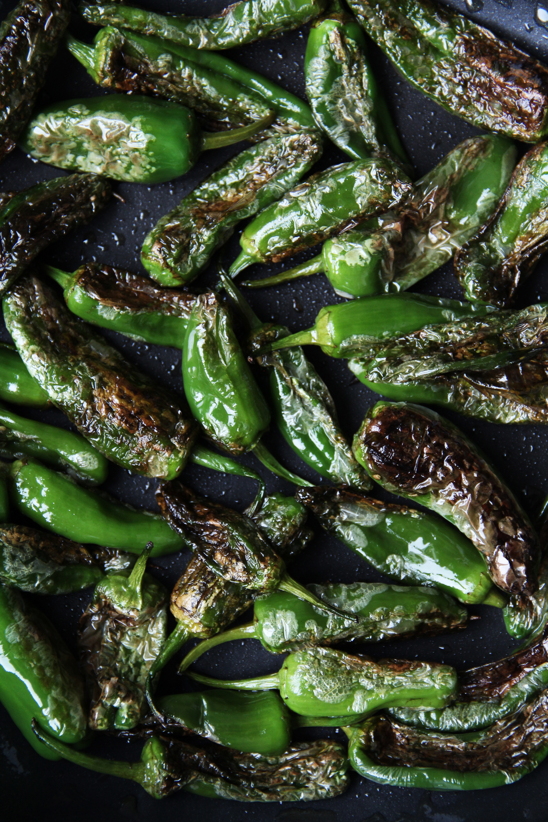 tapas peppers roasted
