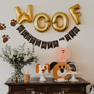 Woof! E's Puppy Pawty & Tips